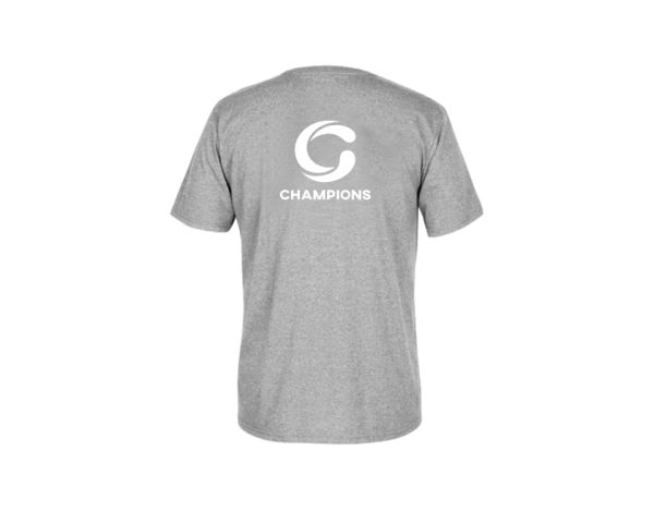 Short Sleeves Sports T-Shirt Crew Neck From Champions - Printed Sports T-Shirt - Gray - Size S