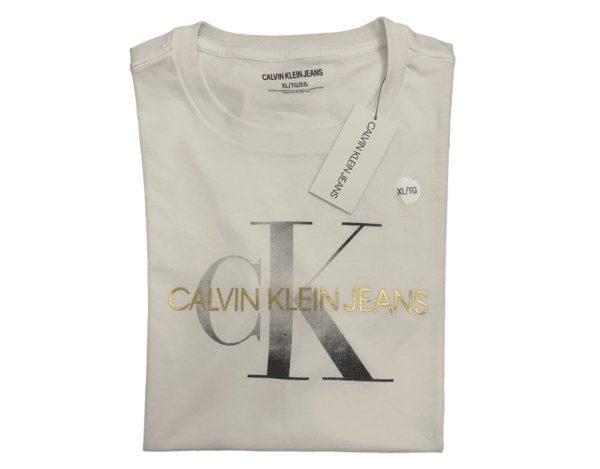 T-Shirt Silver Sign Crew Neck Men's - Calvin klein - White
