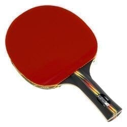 Stiga Table Tennis Racket