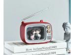 Lighted Decorative TV - Small Decorative TV - Multi Color